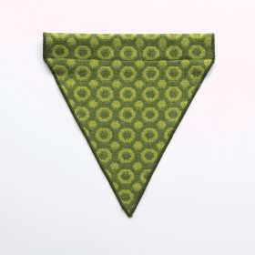 Halo Dog bandana - small to large Apple