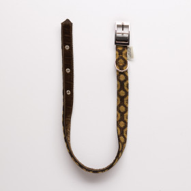Halo Dog collar - small to extra large Ochre