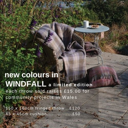 Windfall new colours